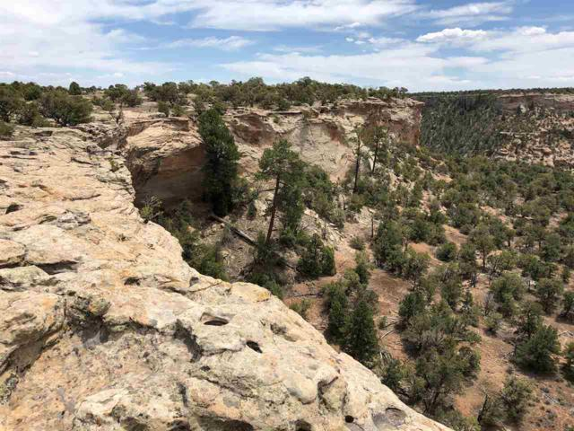 Lot 9 Rough Canyon Road, Glade Park, CO 81523 (MLS #20183166) :: The Christi Reece Group