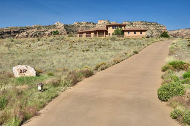 237 Red Rim Drive, Grand Junction, CO 81507 (MLS #20183170) :: The Christi Reece Group