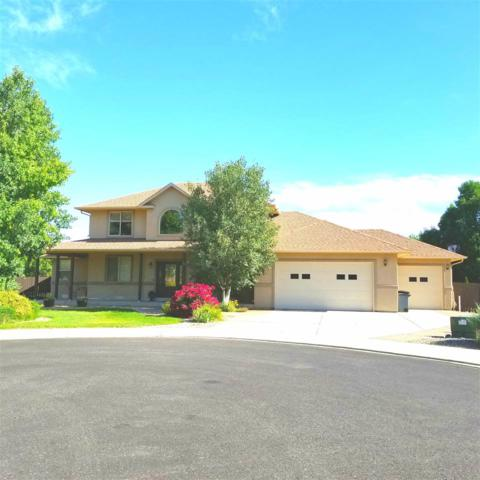 660 Stepher Court, Grand Junction, CO 81507 (MLS #20183184) :: The Christi Reece Group