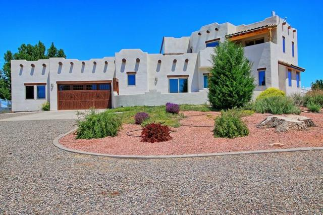 1366 13 3/10 Road, Loma, CO 81524 (MLS #20183188) :: The Grand Junction Group