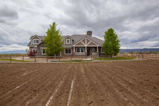 1355 Saddle Ridge Road, Loma, CO 81524 (MLS #20183209) :: Keller Williams CO West / Mountain Coast Group