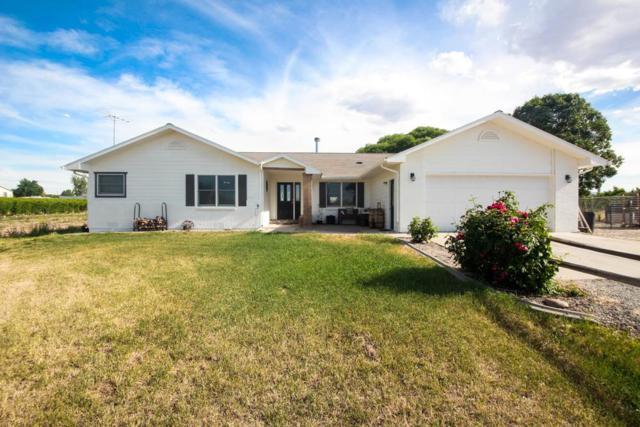 3289 C 1/2 Road, Palisade, CO 81526 (MLS #20183211) :: CapRock Real Estate, LLC
