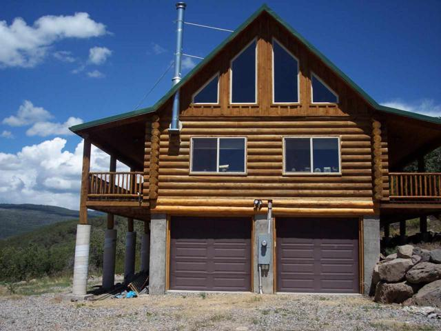 19289 Stoney Creek Ranch, Hotchkiss, CO 81419 (MLS #20183213) :: The Christi Reece Group