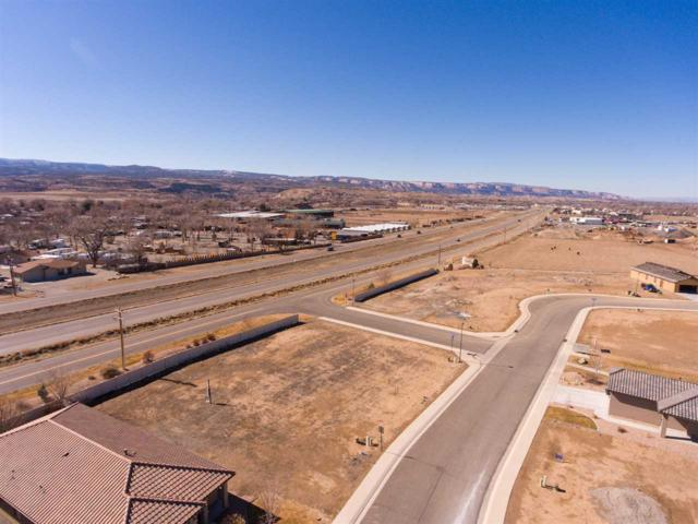 2833 1/2 Kelso Mesa Drive, Grand Junction, CO 81503 (MLS #20183217) :: The Christi Reece Group
