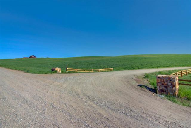 TBD County Road 51C, Hayden, CO 81639 (MLS #20183222) :: CapRock Real Estate, LLC