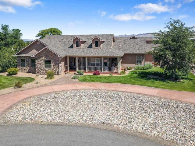 3152 Maddie Court, Grand Junction, CO 81503 (MLS #20183263) :: The Christi Reece Group