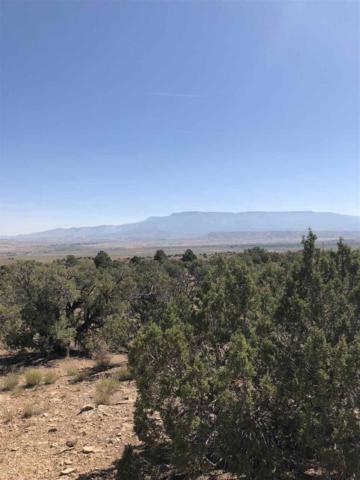 Rt 1 Desert Road, Whitewater, CO 81527 (MLS #20183471) :: The Christi Reece Group