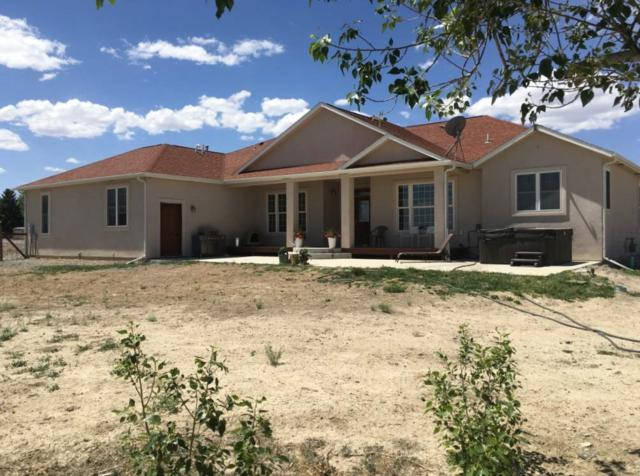 5251 1325 Road, Delta, CO 81416 (MLS #20183489) :: The Grand Junction Group