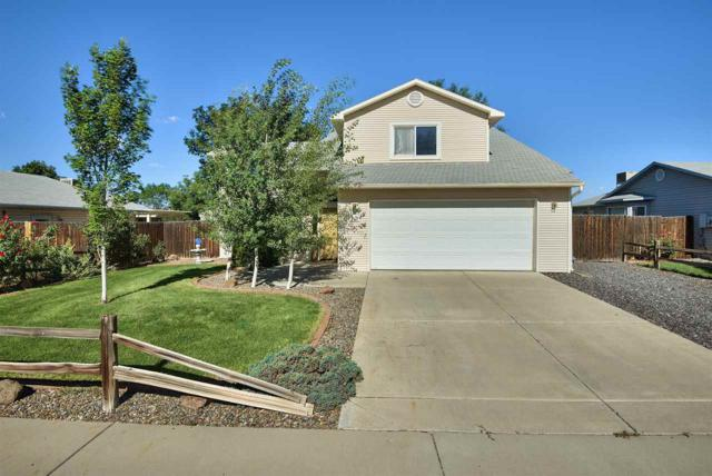 417 W Mallard Way, Grand Junction, CO 81504 (MLS #20183502) :: CapRock Real Estate, LLC