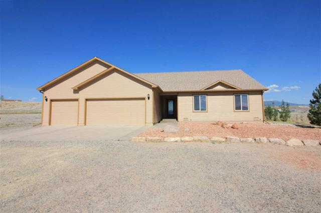 702 Martin Lane, Whitewater, CO 81527 (MLS #20183621) :: The Grand Junction Group