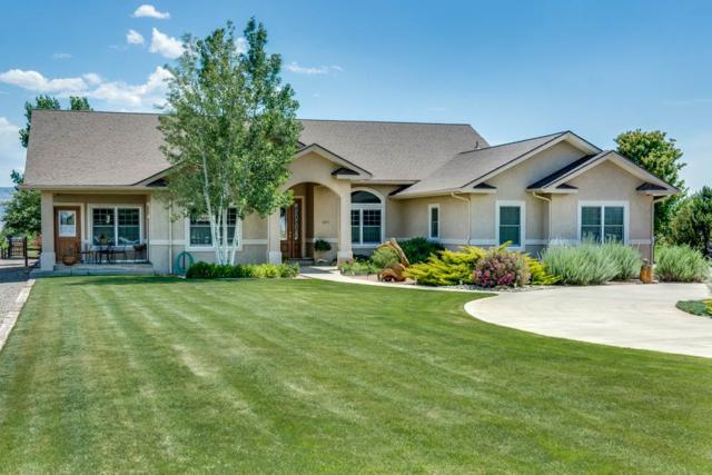1371 Saddle Ridge Road, Loma, CO 81524 (MLS #20183627) :: CapRock Real Estate, LLC