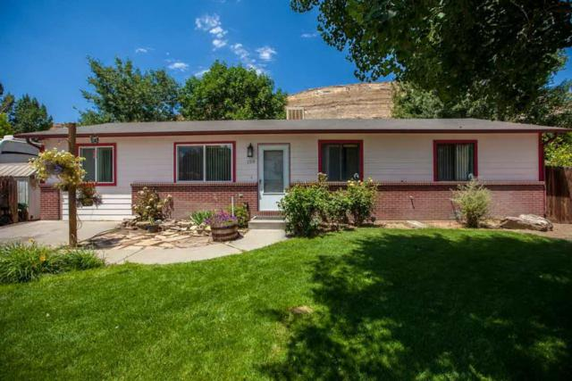 159 Majestic Court, Palisade, CO 81526 (MLS #20183681) :: The Borman Group at eXp Realty