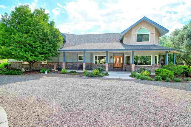 662 Independence Valley Drive, Grand Junction, CO 81507 (MLS #20183851) :: CapRock Real Estate, LLC
