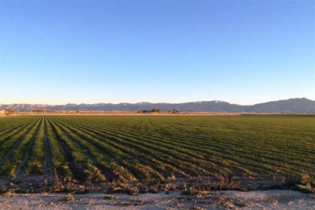 2002 M 1/4 Road, Fruita, CO 81521 (MLS #20183952) :: The Christi Reece Group