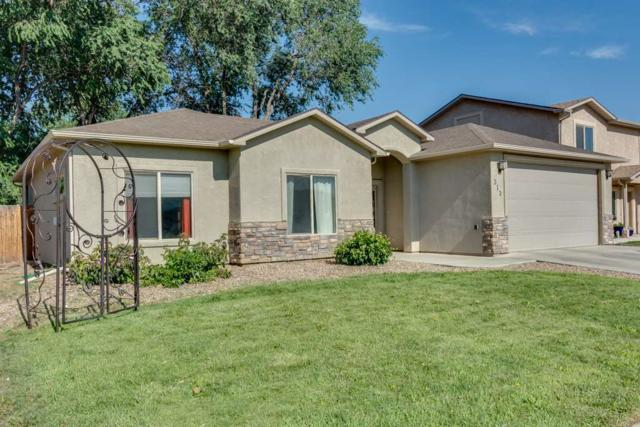 313 Carriage Hills Court, Grand Junction, CO 81503 (MLS #20183962) :: CapRock Real Estate, LLC