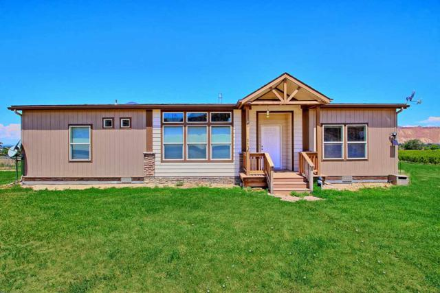3576 E Road, Palisade, CO 81526 (MLS #20183988) :: The Borman Group at eXp Realty