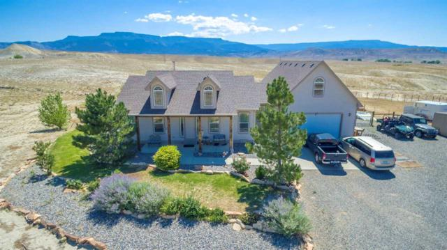 604 Los Broncos Road, Whitewater, CO 81527 (MLS #20184004) :: The Christi Reece Group