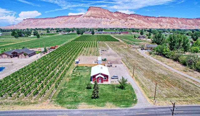3472 F Road, Clifton, CO 81520 (MLS #20184084) :: The Grand Junction Group