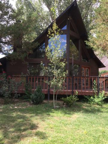 539 Cicero Drive, Palisade, CO 81526 (MLS #20184088) :: The Borman Group at eXp Realty