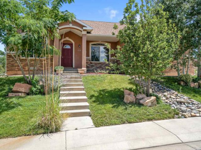 132 Buena Vista Drive, Grand Junction, CO 81503 (MLS #20184108) :: The Grand Junction Group