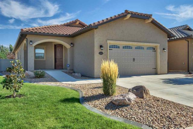 2836 Trevor Mesa Drive, Grand Junction, CO 81503 (MLS #20184115) :: The Borman Group at eXp Realty