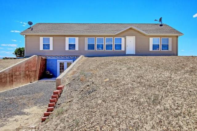 1994 Three Eagles Way, Loma, CO 81524 (MLS #20184147) :: The Christi Reece Group