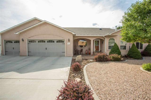 1041 Wildwood Drive, Fruita, CO 81521 (MLS #20184158) :: The Borman Group at eXp Realty
