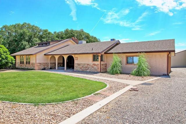 276 31 Road, Grand Junction, CO 81503 (MLS #20184163) :: The Borman Group at eXp Realty