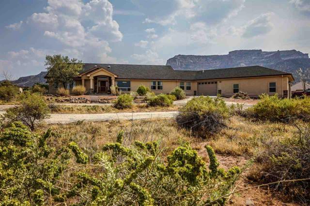 346 Buffalo Court, Grand Junction, CO 81507 (MLS #20184680) :: CapRock Real Estate, LLC