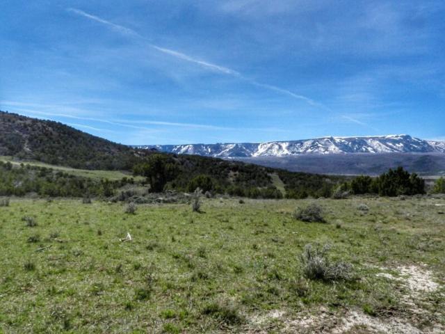 8672 Highway 65, Mesa, CO 81643 (MLS #20184907) :: The Christi Reece Group