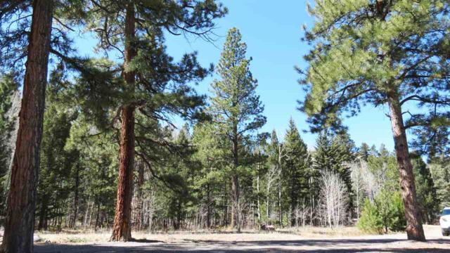 22 W Canyon View Drive, Antonito, CO 81120 (MLS #20184952) :: The Christi Reece Group