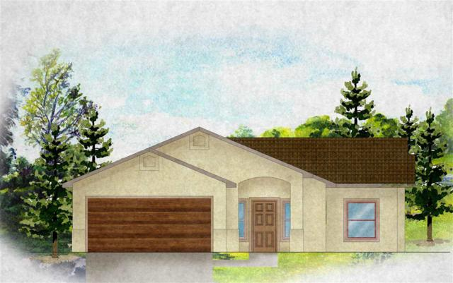 207 Kelso Mesa Drive, Grand Junction, CO 85103 (MLS #20184962) :: The Christi Reece Group