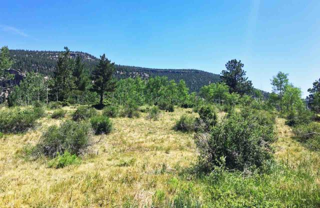 Lot 62 N Bear Paw Court, Antonito, CO 81120 (MLS #20184978) :: The Christi Reece Group