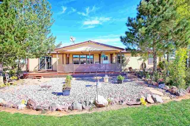 14750 Bs Road, Glade Park, CO 81523 (MLS #20185004) :: CapRock Real Estate, LLC