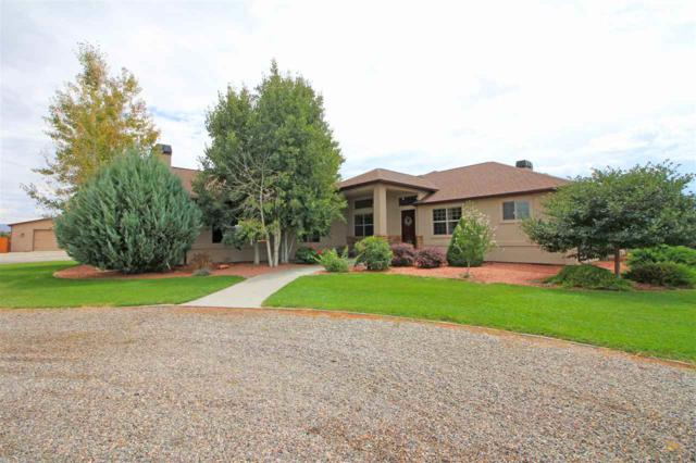 1116 22 Road, Grand Junction, CO 81505 (MLS #20185018) :: The Borman Group at eXp Realty