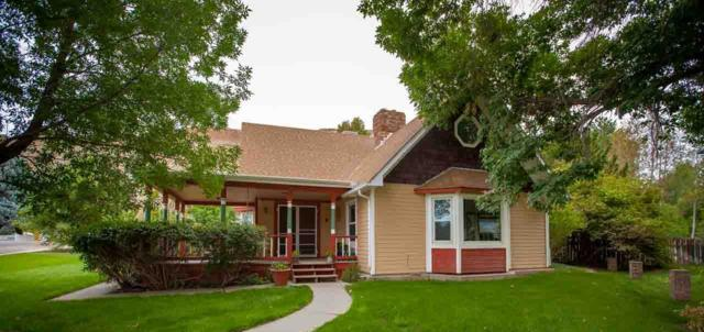 159 Elberta Avenue, Palisade, CO 81526 (MLS #20185073) :: The Christi Reece Group