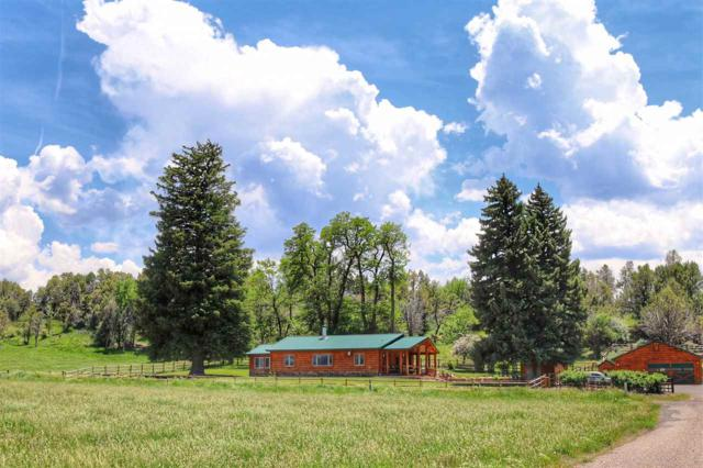 55945 Oe Road, Collbran, CO 81624 (MLS #20185136) :: The Grand Junction Group