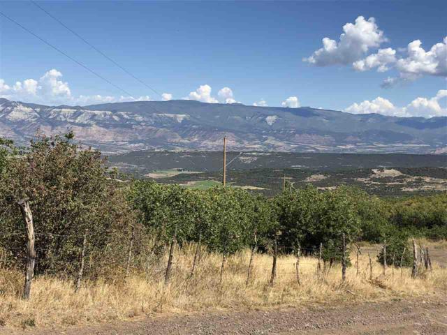 53027 Bull Basin Road, Mesa, CO 81643 (MLS #20185157) :: The Christi Reece Group