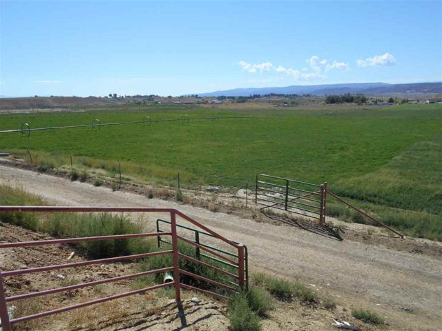 1862 9 Road, Mack, CO 81525 (MLS #20185158) :: Keller Williams CO West / Mountain Coast Group