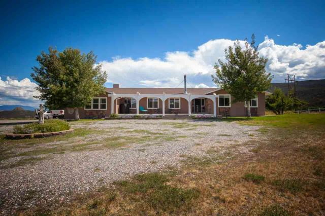 9734 Highway 65, Mesa, CO 81643 (MLS #20185167) :: CapRock Real Estate, LLC