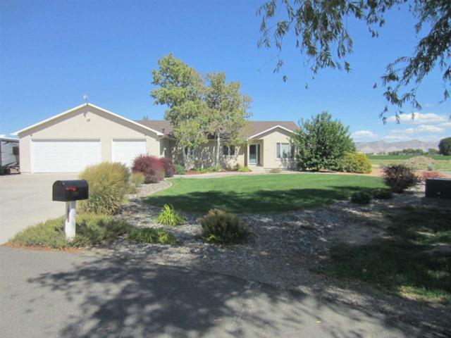 1206 Adobe Court, Grand Junction, CO 81505 (MLS #20185219) :: The Christi Reece Group