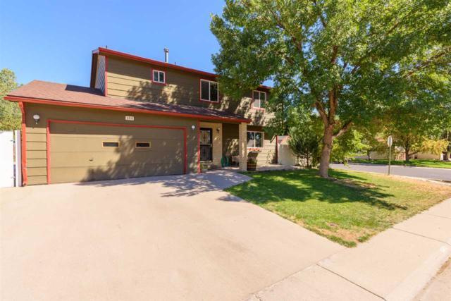 584 Placer Street, Grand Junction, CO 81504 (MLS #20185230) :: The Christi Reece Group