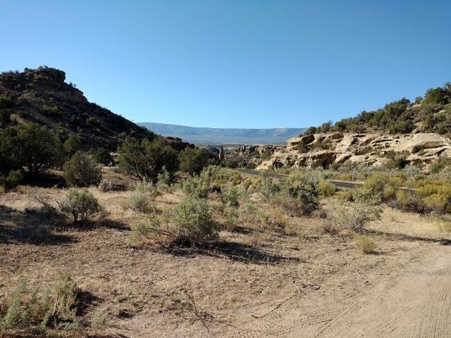 TBD 45 1/2 Road, Mesa, CO 81643 (MLS #20185284) :: CapRock Real Estate, LLC
