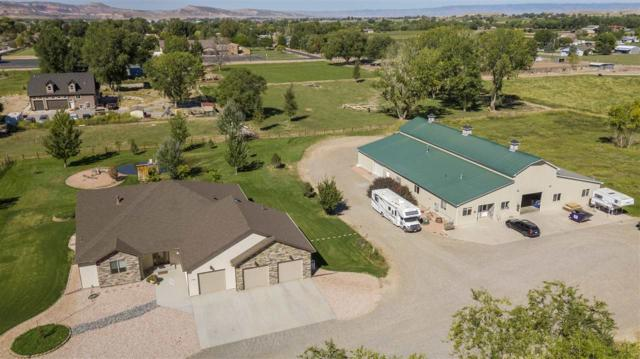 1776 K 6/10 Road, Fruita, CO 81521 (MLS #20185304) :: The Christi Reece Group