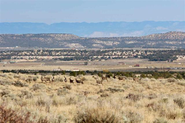 Lot 8 Red Creek Ranch Road, Glade Park, CO 81523 (MLS #20185360) :: CapRock Real Estate, LLC