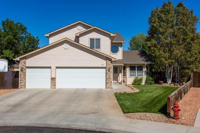219 Dogwood Court, Fruita, CO 81521 (MLS #20185399) :: CapRock Real Estate, LLC