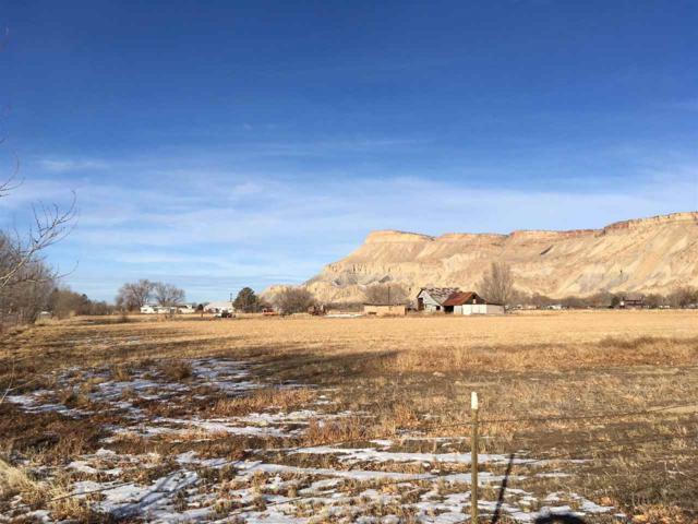 3720 G Road, Palisade, CO 81526 (MLS #20185431) :: The Grand Junction Group