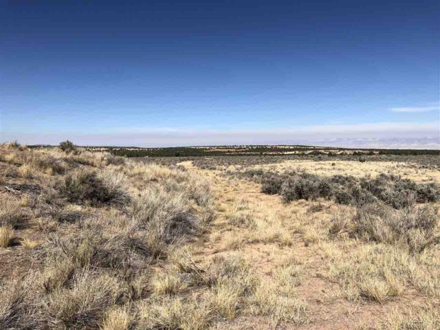 21512 Rough Canyon Road, Glade Park, CO 81523 (MLS #20185503) :: CapRock Real Estate, LLC