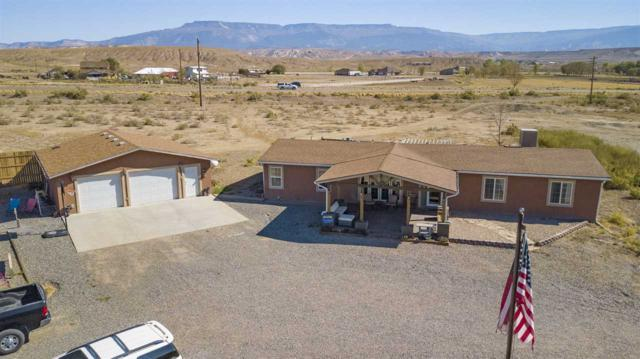 796 Siminoe Road, Whitewater, CO 81527 (MLS #20185517) :: The Grand Junction Group