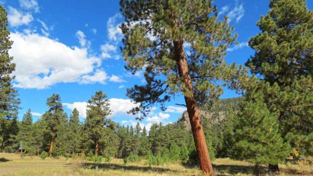 133 W Canyon View Drive, Antonito, CO 81120 (MLS #20185560) :: The Borman Group at eXp Realty